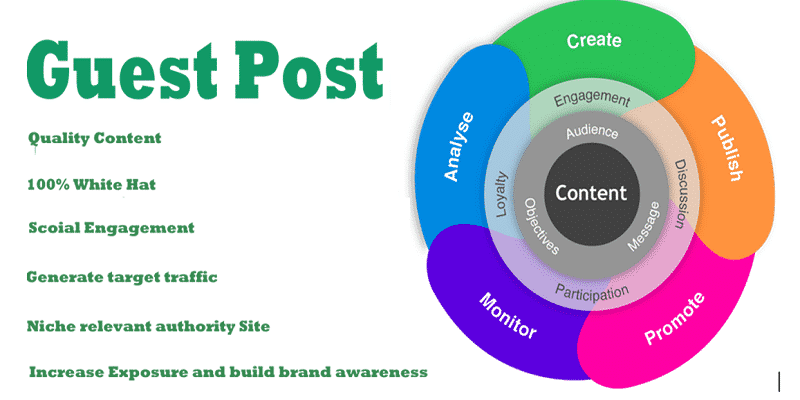 Professional Guest Posting Services