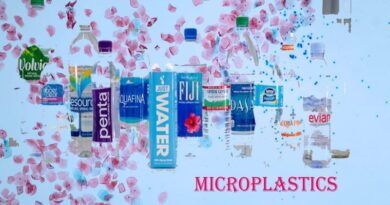 microplastics and food
