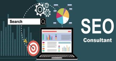 Professional SEO Consultant can Help you Develop your Business